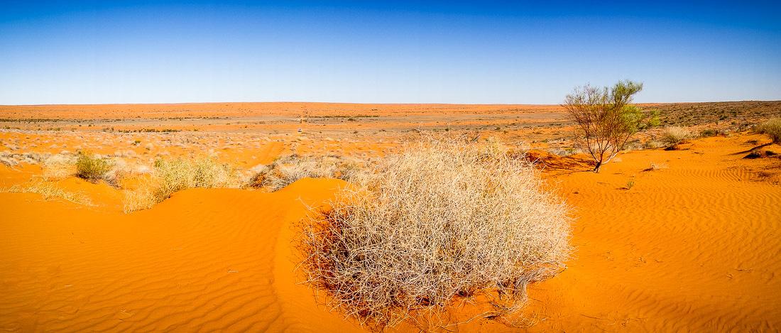 Simpson_desert-457