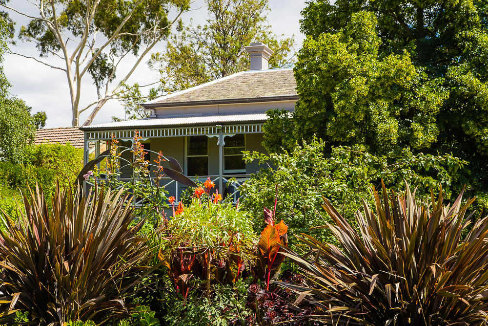 Alphington garden-028