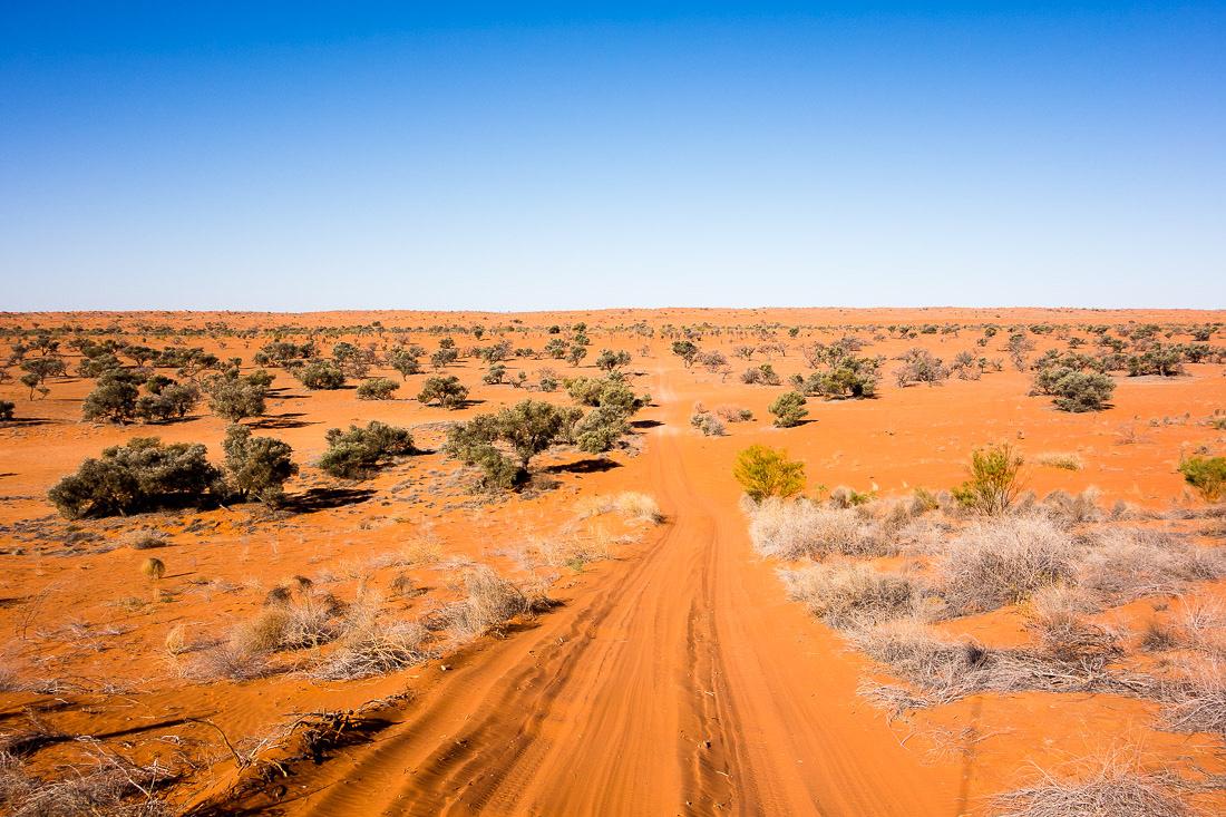 Simpson_desert-539